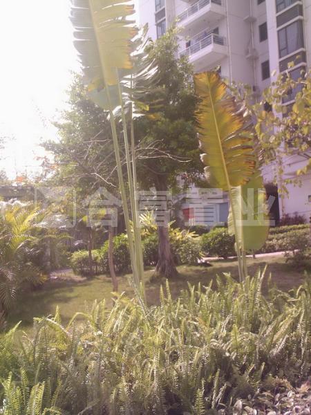 南国嘉园苹果城