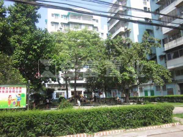 黄岐明珠广场