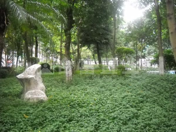 珠江花园怡景湾