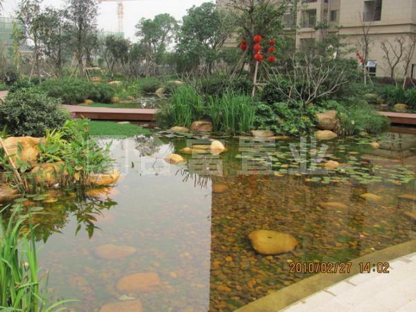 保利城花园塞汶湖