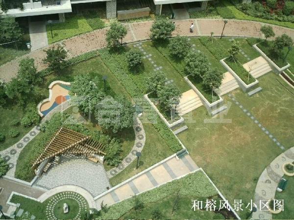 光大花园和榕风景