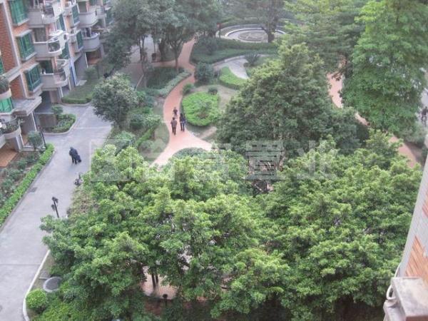 华景新城泽晖苑