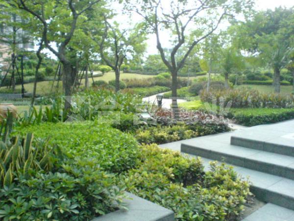 万科天景花园