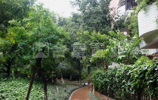 东方明珠花苑