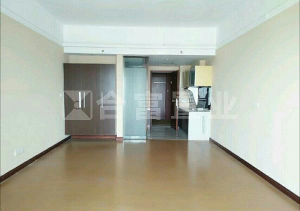 银丰国际公寓
